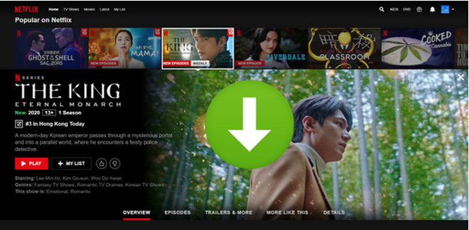 download netflix video from web player